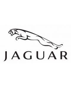 Jaguar 1X4A 14B321 CF Air Bag ECU Reset