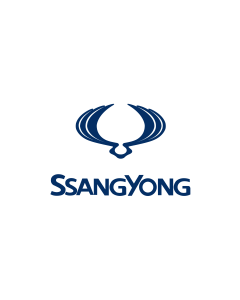 Ssang Yong 86251-31030 Air Bag ECU Reset