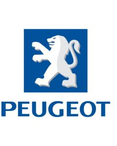 Peugeot 14 810 000 80 (550 53 98 00) Air Bag ECU Reset