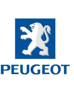 Peugeot 96 430 823 80 AZ (550 54 15 00) Air Bag ECU Reset