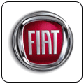 Fiat crash data reset logo